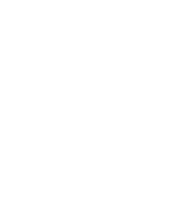 © 2018 the Bright Green Futures Logo